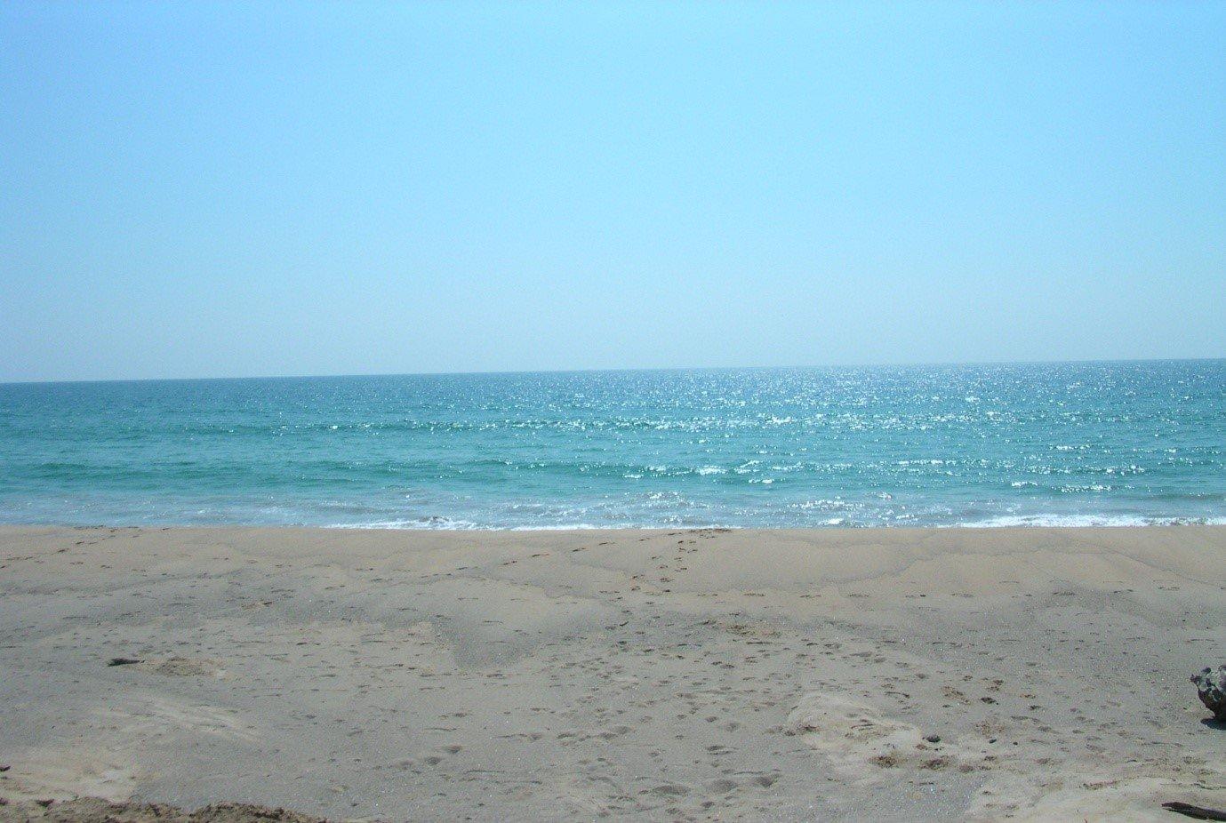 19 Rai of Pristine Oceanfront Land on Natai Beach