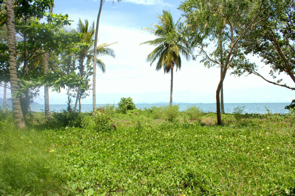 Long Beach – 10 Rai Sea Front Land in Had Yao, Krabi