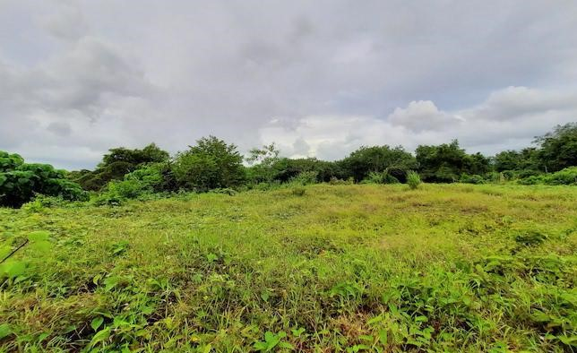 Prime Location – 2,247 sqm. Land Plot in Cherngtalay